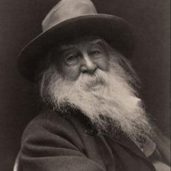 Walt_Whitman.PNG
